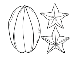 Click To See Printable Version Of Carambola Or Star Fruit Coloring Page