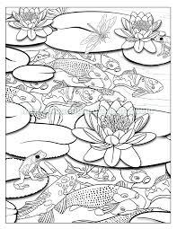 Kuvahaun Tulos Haulle Koi Pond Colouring Pages