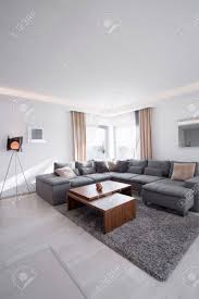 cozy and modern living room in the house