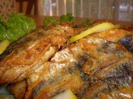 recettes de cuisine tunisienne sardines panées à la tunisienne filkoujina