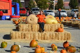 Pumpkin Patch Reno by Silver Valley Pumpkins Family Fun Christmas Trees For Sale
