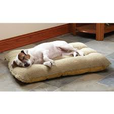 xl dog beds 28 images extra large 52 majestic pet bagel bed