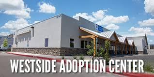 winrock animal clinic adopt animal humane new mexico