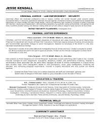 Police Officer Resume Example Impressive Professional