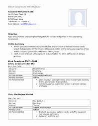 Resume Format For Lecturer In Computer Science Best Of Manqal Hellenes