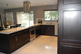 Black Kitchen Cabinets Espresso Color Painted Contemporary Wooden
