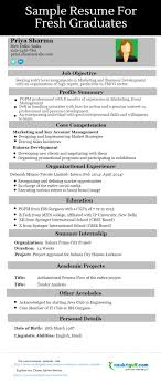Here Is How Your Ideal Resume Should Like