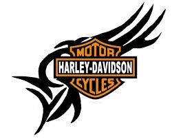 HARLEY DAVIDSON Biker Bike LARGE Temporary FACE Amp