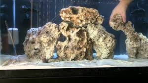 40 Gallon Reef Tank Part 3 Fiji Dry Live Rock Aquascape - YouTube Aquascape Designs Surripuinet Aquascaping Live Rocks In Your Saltwater Aquarium Columns A Saltwater Tank Callorecom Need Ideas General Rfkeeping Discussion Week 3 Aquascaping 120 Gal Rimless Update Youtube 55g Vertical Tank Ideas Saltwaterfish Forum Aquascape With Rocks Google Search Aquariums Pinterest Bring Back The Wall Rock News Reef Builders Walls For Building Tiger Fish Aquascapinglive Rock Help Tcmas Forums