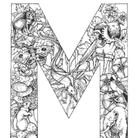Animal And Plant Alphabet Letter M