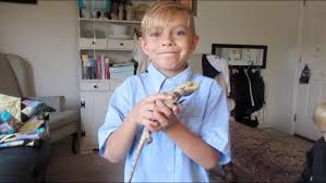 415 Best Pregnancy Kids Images by Sad Kid Says Goodbye To His Pet Boys Pet Lizard Died