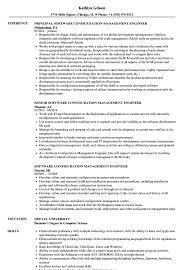 Download Software Configuration Management Engineer Resume Sample As Image File