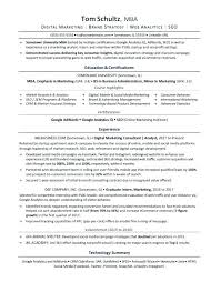 Mba Resume Examples Sample Title For Freshers 254