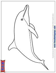 Cute Cartoon Dolphin Coloring Page