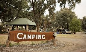 100 Jamberoo Camping PetFriendly Holiday Parks NSW Holidays With Dogs