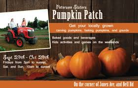 Sand Mountain Pumpkin Patch by The Peterson Sisters Pumpkin Patch