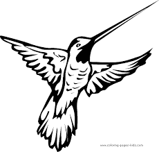 Hummingbird Color Page Printable Coloring Picture