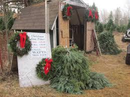 Christmas Tree Baler Used by Christmas Trees Watts Tree Farm Blog