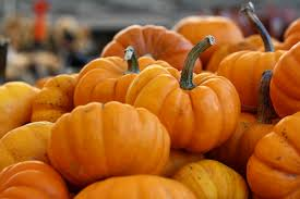 What Kinds Of Pumpkins Are Edible by 7 Benefits Of Pumpkin In Skincare Products That U0027ll Make You Go