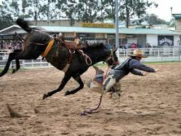 canape rodeo warwick rodeo articles topics warwick daily