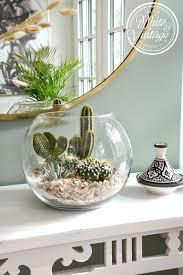 kaktus deko kakteen im glas wohnzimmer pflanzen deko
