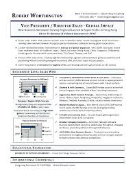 Vice President Resume Samples Sales Sample Example Executive Writer