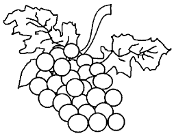 Pin Grape Clipart Coloring Page 4