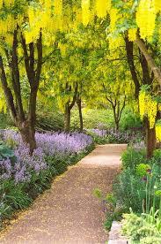 siege social botanic 27 best in the garden images on botanical gardens