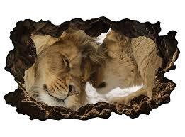 3d wandtattoo löwe löwin paar liebe tiere afrika wandbild selbstklebend wandmotiv wohnzimmer wand aufkleber 11e639 wandtattoos und leinwandbilder
