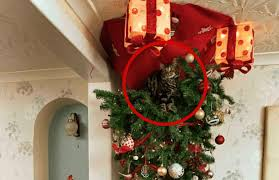 They Hung Their Christmas Tree Upside Down For Kittens Sake Inside