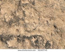 Closeup Natural Stone Floor Texture Background