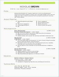 Burger Writing Template Choice Image Professional Report Word Diagram For Essays