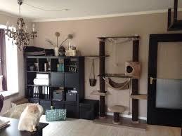 katzengerechtes wohnzimmer4 wohnzimmer ikea tisch katzen