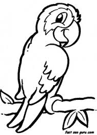Printable Jungle Bird Parrot Coloring Pages