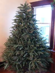 One Of The Most Realistic Christmas Trees I Have Ever Owned Its Called Flat