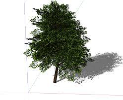 3d warehouse trees won t download sketchup sketchup community