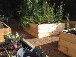 4x4 Raised Garden Bed Kits