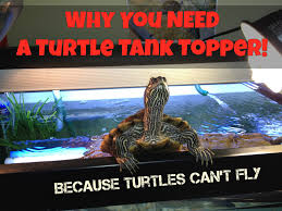 Flukers Turtle Clamp Lamp by Turtle Topper Above Tank Basking Platform U0026 Dock Spiffy Pet Products