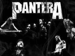 pantera discography 83 folders 728 tracks dd identi