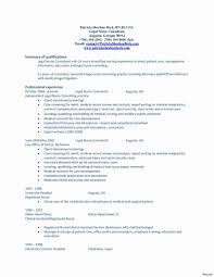 Sample Professional Summary For Nursing Resume Format Examples Of ...