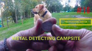 Black Mouth Cur Shed Hunting by Metal Detecting A Campsite In Suffolk 2017