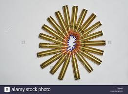 223 5.56x45 Barnes Tipped TSX Ballistic Tip Ammunition 20 Rounds ... 223 556x45 Barnes Tipped Tsx Ballistic Tip Ammunition 20 Rounds Bullets 21520 55 20rds 300 Blk 110 Gr Tactx 2400 Fps 16 Barrelhttp Trajetech Rem 55gr N223b55 Woodbury Outfitters Cfe223 1st Test Range Report The Firing Line Forums Gelatin Data For And 556 Winchester Pdx1 60 Grain Split Core Hollow Remington Black Hills 200 Rounds Of Discount Ammo For Sale By Vortx Hog Hunter 308 168 Ttsx In 243 Shooters Forum