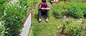 Top Garden Blogs Home Improvement Brands Should Be Following The