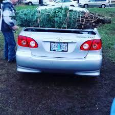 Christmas Tree Baler For Sale by Kowalski Family Christmas Tree Farm Home Facebook
