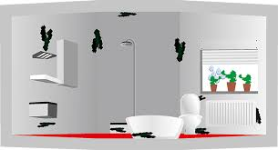 schimmel im badezimmer sicher entfernen schimmelprotektor