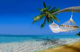 Palm Tree Hammock Sea