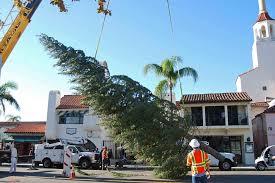 45 Foot Holiday Tree Arrives In Downtown Santa Barbara
