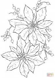 Click The Poinsettia Flower Coloring Pages