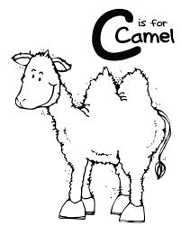 Camel Coloring Page Pages Alphabet C Is For Printable