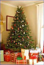 Best Type Of Christmas Tree by Types Of Christmas Trees That Last The Longest Home Design Ideas